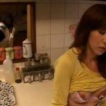 家族が食卓で食事しているのが見える台所で携帯のバイブで乳首やクリと刺激しながら声を殺してオナる淫乱人妻!【Pornhub】